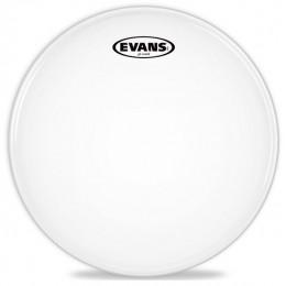 Evans B12G2